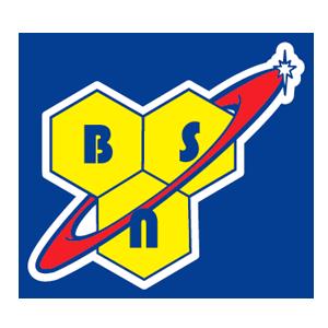 bsn logo miniatura
